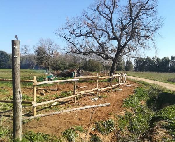 Iniziati i lavori per la creazione dell'area attrezzata al Parco di Montioni