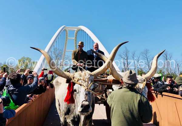 """Inaugurato il ponte sull'Ombrone: """"Giornata storica per Grosseto e la Maremma"""""""