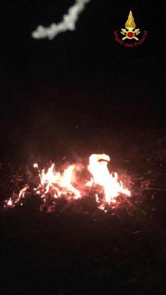 Incendio in corso in un bosco: Vigili del Fuoco in azione