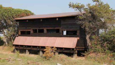 Photo of Parco della Maremma: inaugurato il capanno di osservazione degli uccelli a Bocca d'Ombrone