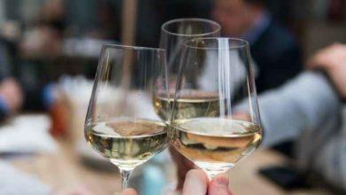 Photo of Vite, vino e biotecnologie: se ne parla in un seminario al Polo universitario