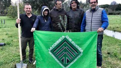 """Photo of Festa dell'albero: """"Foresta che avanza"""" celebra la ricorrenza e pianta due olivi"""