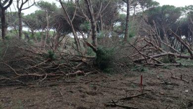 Photo of Appello di Piero Pelù per ripulire la spiaggia della Feniglia dai rifiuti