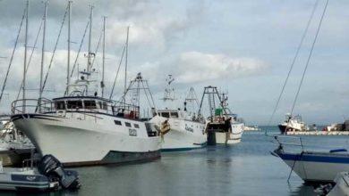 """Photo of Pesca, Forza Italia lancia l'allarme: """"Porto off limits, servono lavori urgenti"""""""