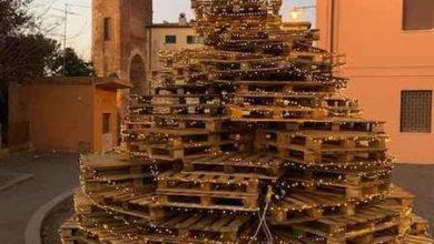 Photo of Alberi di Natale riciclati: il Comune premia le frazioni