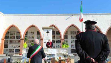 Photo of Insieme in Rosa dona piante di olivo al parroco per Pasqua: saranno sistemate nei cimiteri