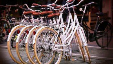 """Photo of Stefano Pivato presenta il suo libro sulla storia """"sociale"""" della bicicletta"""