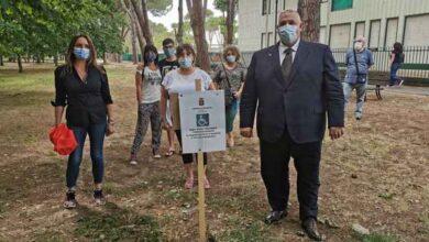 Photo of Una zona ombreggiata per le associazioni di volontariato: nuovo servizio dedicato alle famiglie