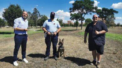 """Photo of Lotta alla droga, il Comune: """"Bene operazione al parco Ombrone, la zona sarà riqualificata"""""""