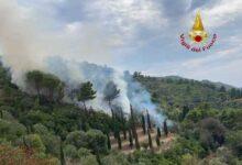 Photo of Incendio all'Argentario: Vigili del Fuoco sul posto, in azione anche l'elicottero della Regione