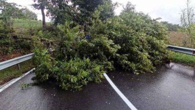 Photo of Maltempo: dichiarato lo stato d'emergenza regionale