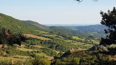 Photo of Poggio all'Olmo: il Comune affida la gestione del centro visite all'interno della riserva naturale