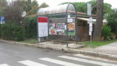 Photo of L'autobus si attende sotto le nuove pensiline: venti avranno un design originale